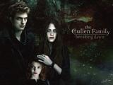 Twilight Saga Breaking Dawn