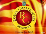 the royal challengers bangalore