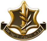 israel defence force