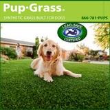 PUP Grass